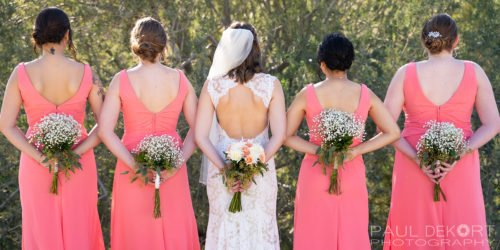 Wedding Photo of Bridesmaids with flowers